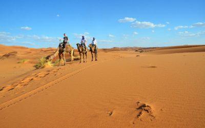 Morocco Road Trip Day 4 | Ouarzazate to Merzouga