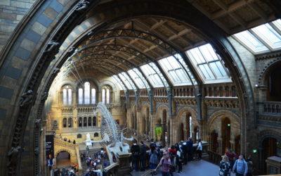 Top Free Things to do in London